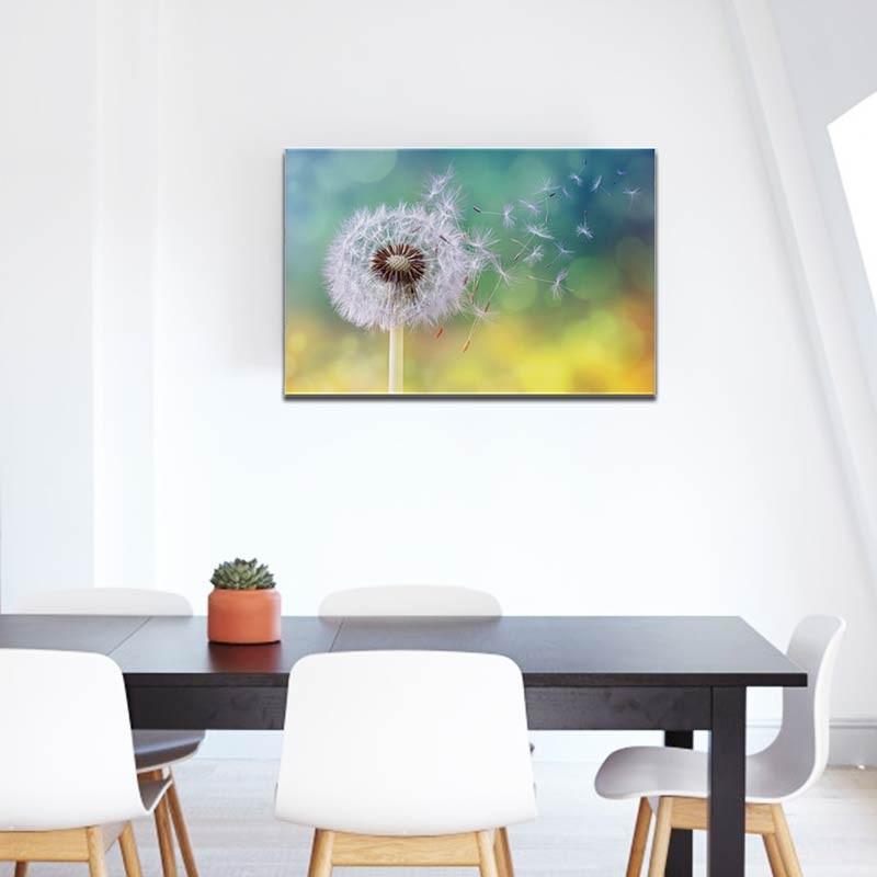 Fiore Soffione, Tela Canvas