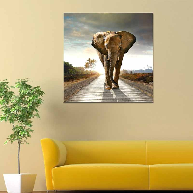Elefante, Tela Canvas