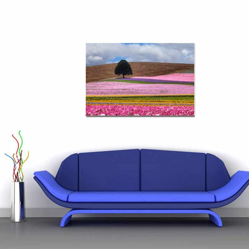 Campo fiorito, Tela Canvas